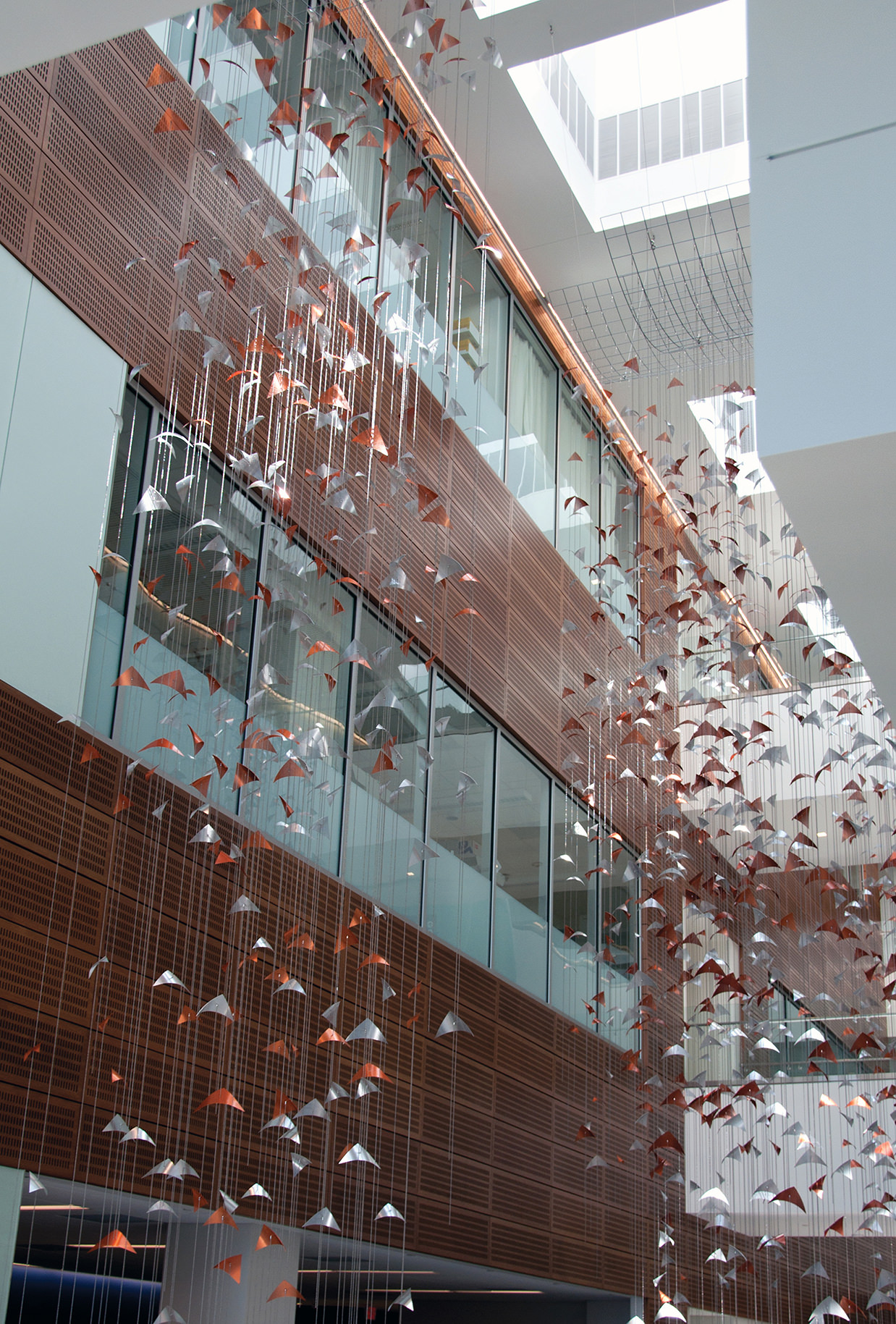 Talley Fisher's Primordium in the atrium in Clinical and Translational Research Center, University of Buffalo