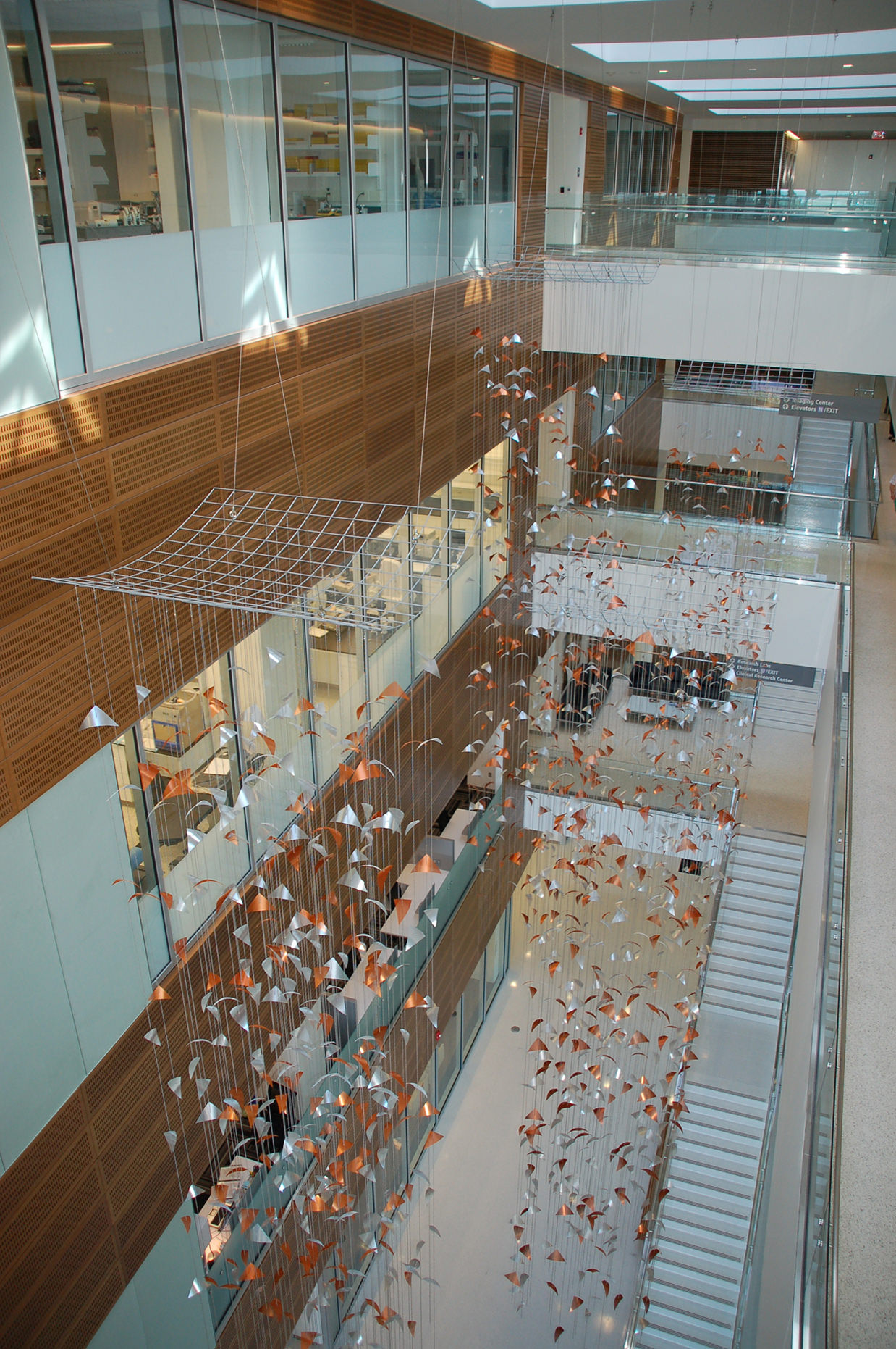 Suspension grids for Talley Fisher's Primordium, Clinical and Translational Research Center, University of Buffalo,