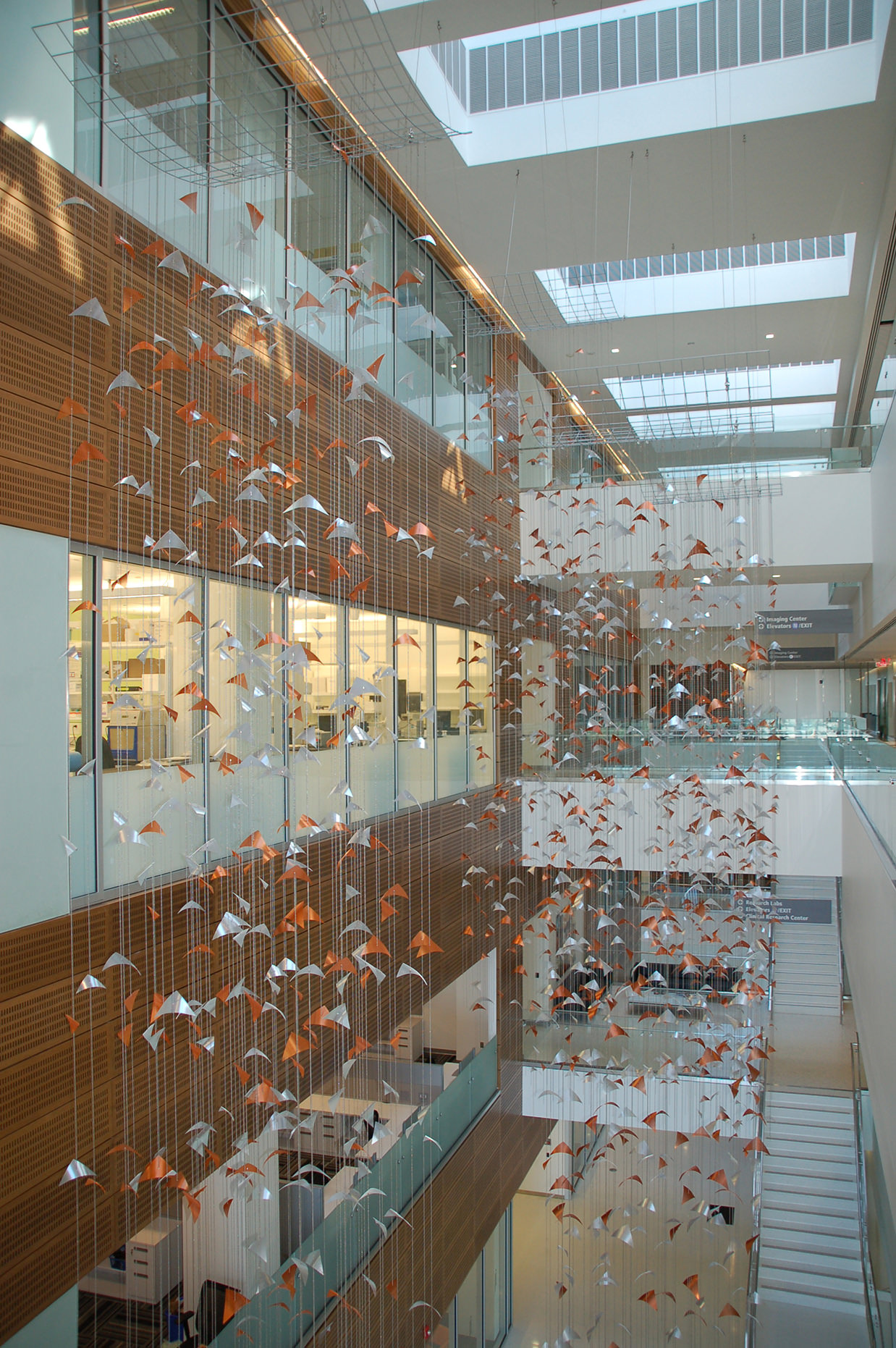 Primordium large-scale suspended sculpture by Talley Fisher at Clinical and Translational Research Center, University of Buffalo